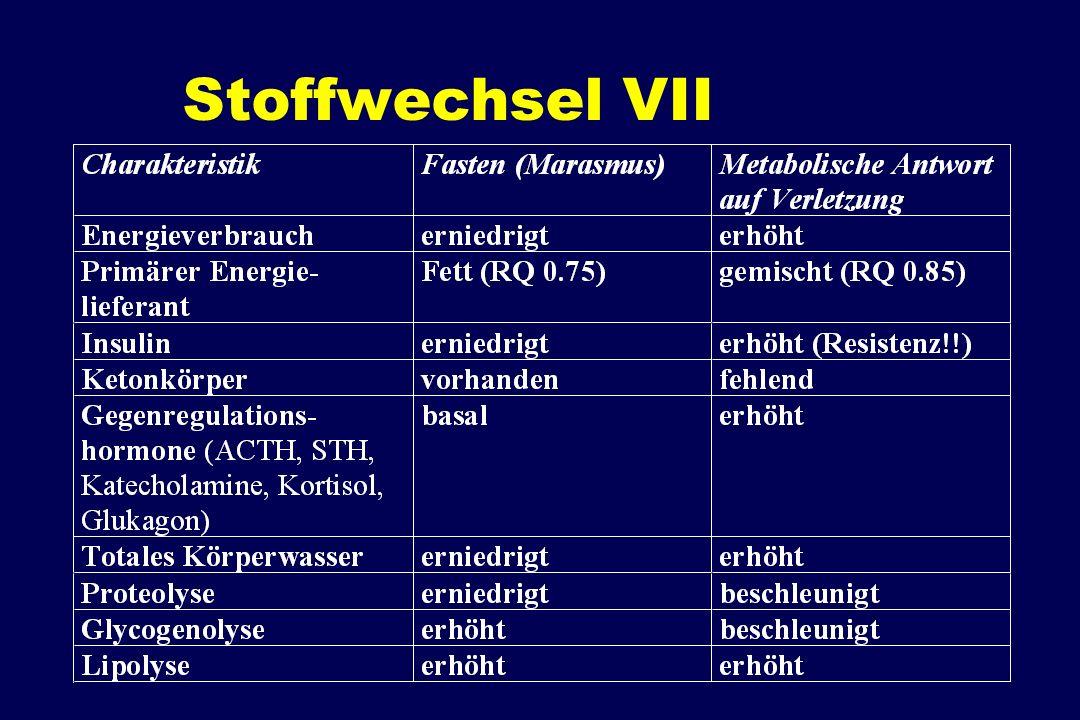 Stoffwechsel VII