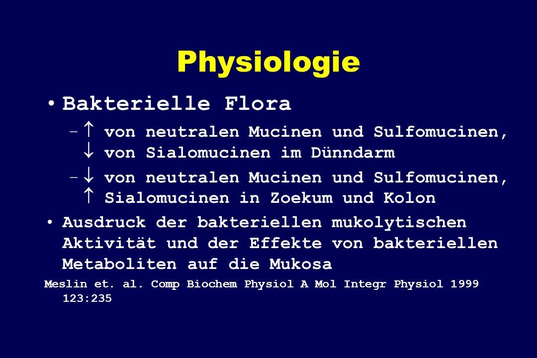 Physiologie Bakterielle Flora