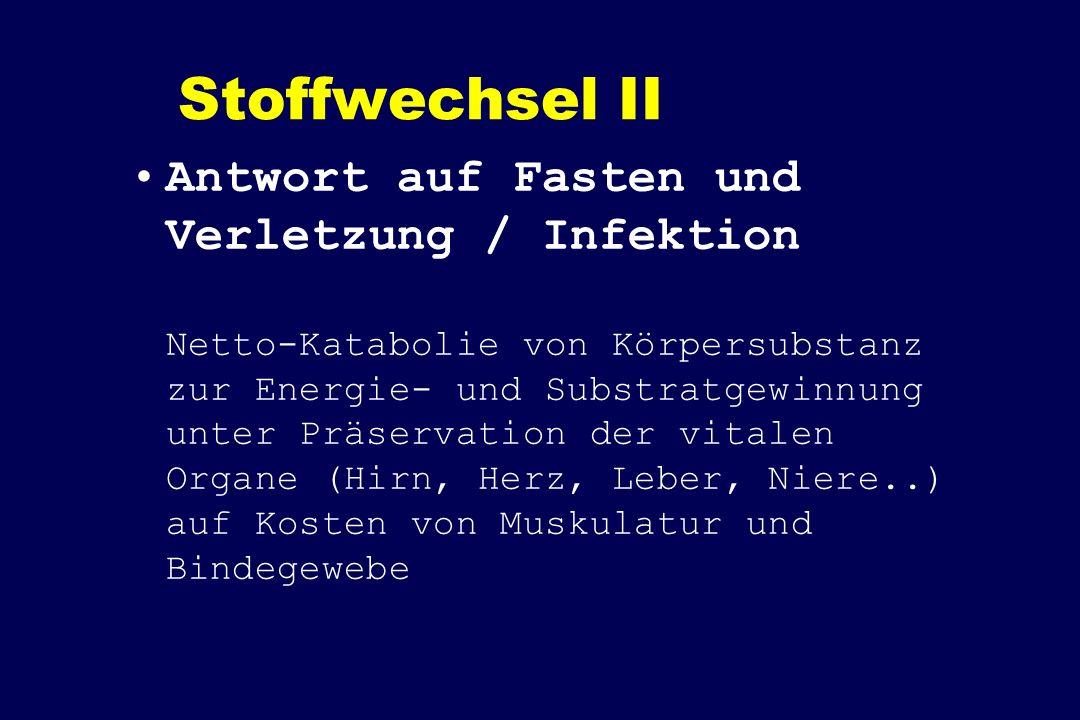Stoffwechsel II