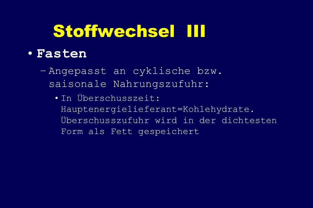 Stoffwechsel III Fasten