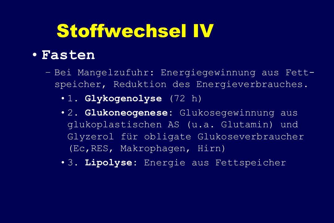 Stoffwechsel IV Fasten