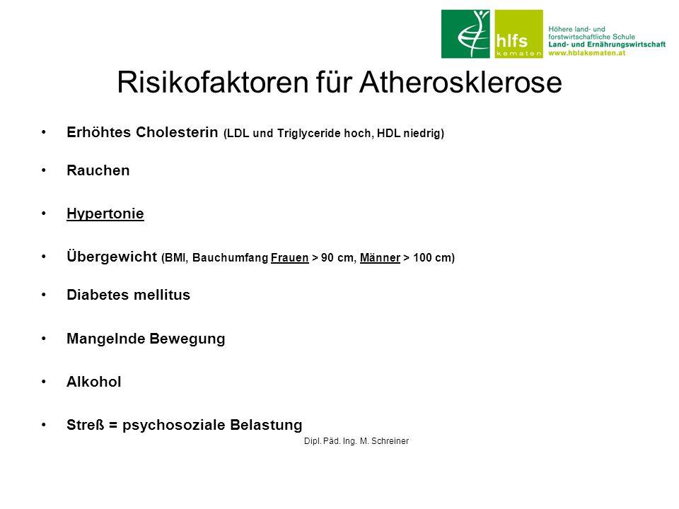 Risikofaktoren für Atherosklerose