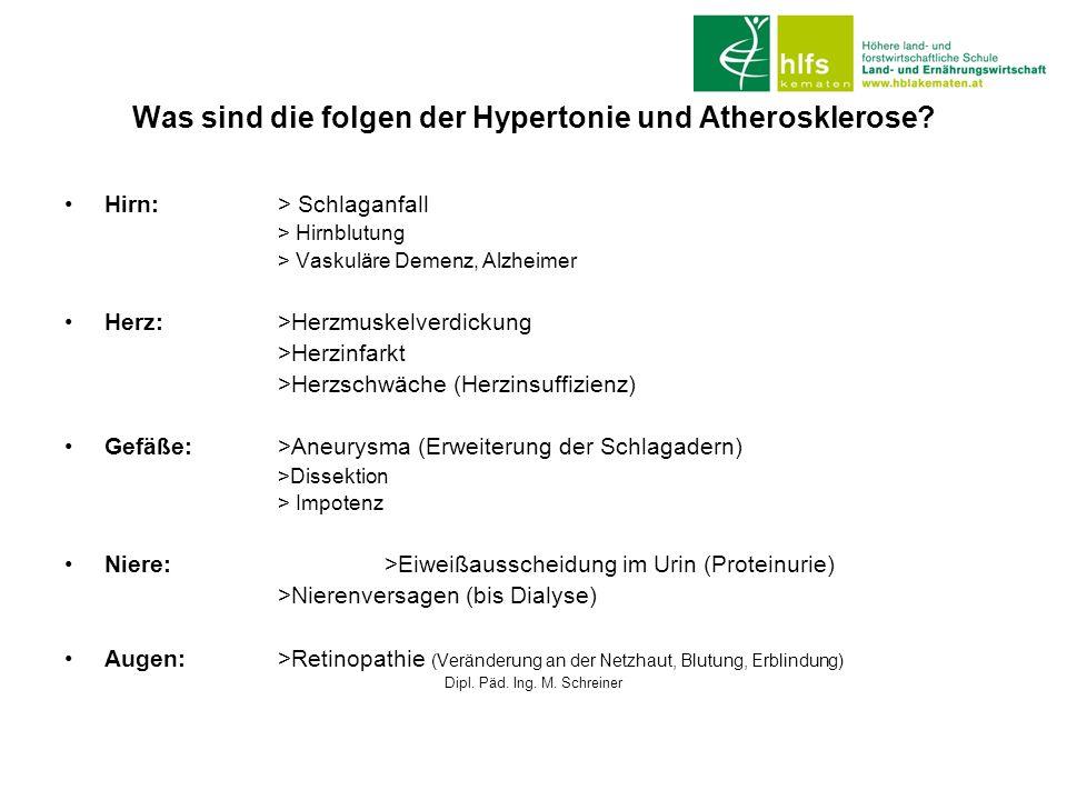 Was sind die folgen der Hypertonie und Atherosklerose