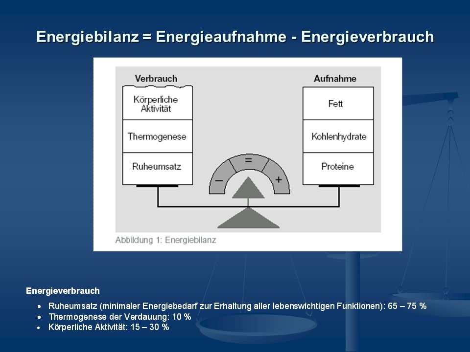 Energiebilanz = Energieaufnahme - Energieverbrauch