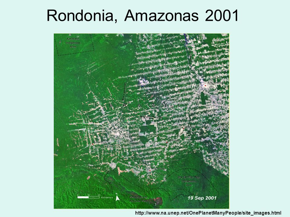 Rondonia, Amazonas 2001 http://www.na.unep.net/OnePlanetManyPeople/site_images.html