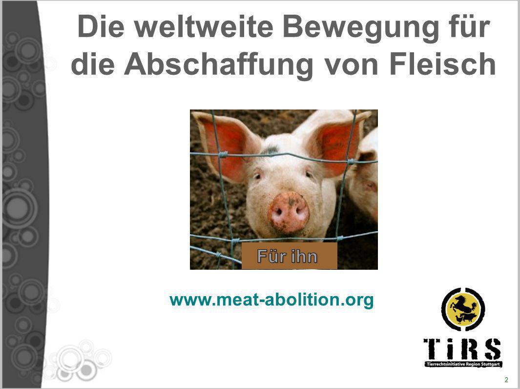Die weltweite Bewegung für die Abschaffung von Fleisch