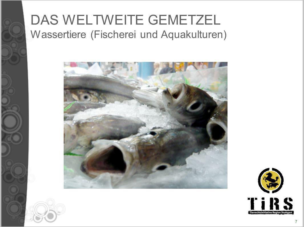 DAS WELTWEITE GEMETZEL Wassertiere (Fischerei und Aquakulturen)