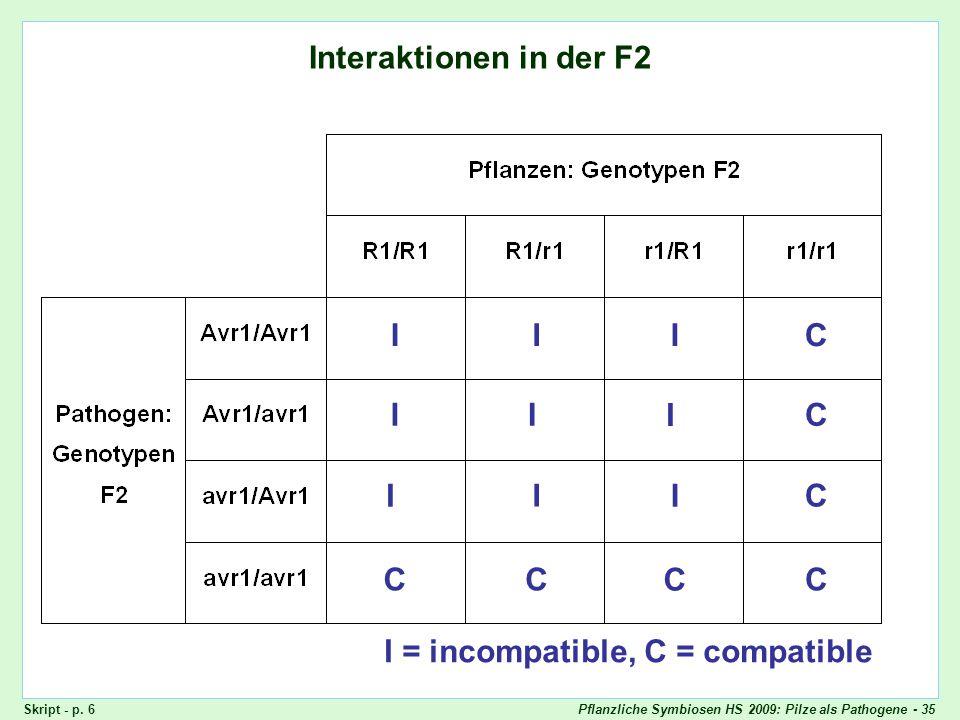 Quadratische Checks: F2