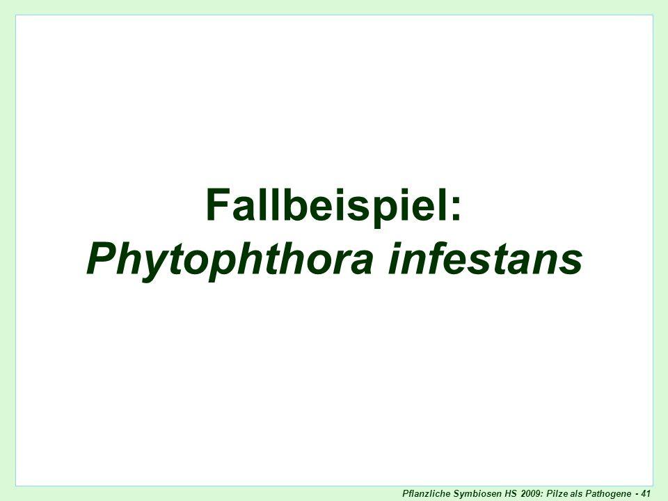 Oomyceten als Pathogene