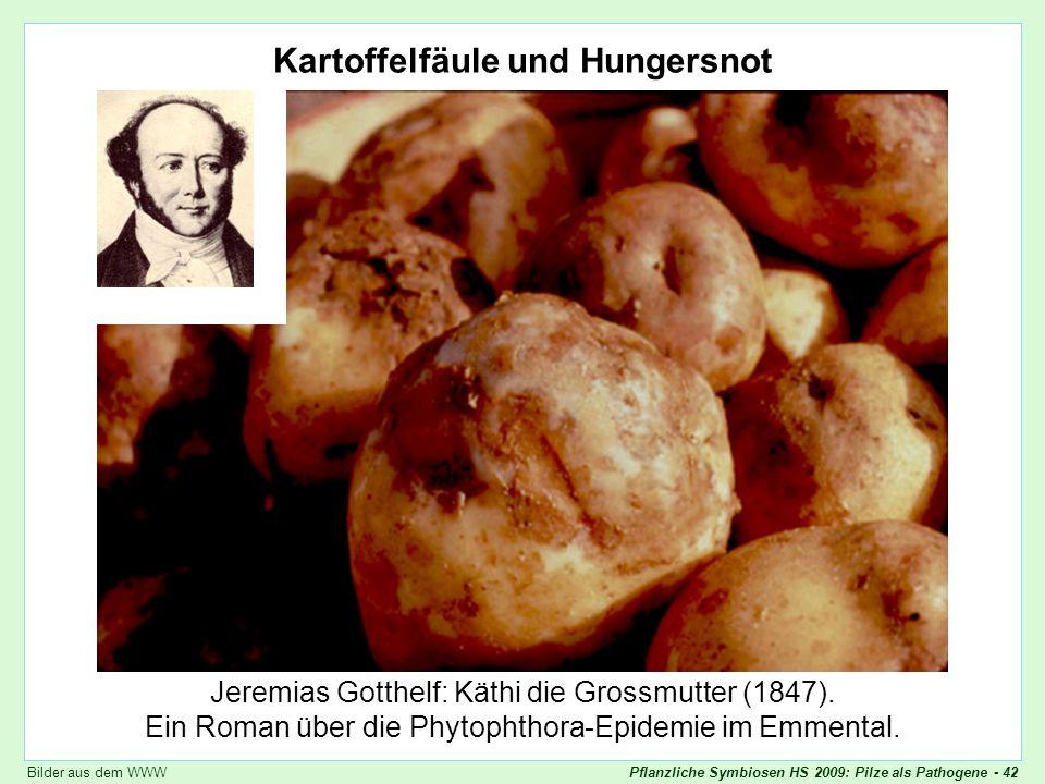 Kartoffelfäule und Hungersnot