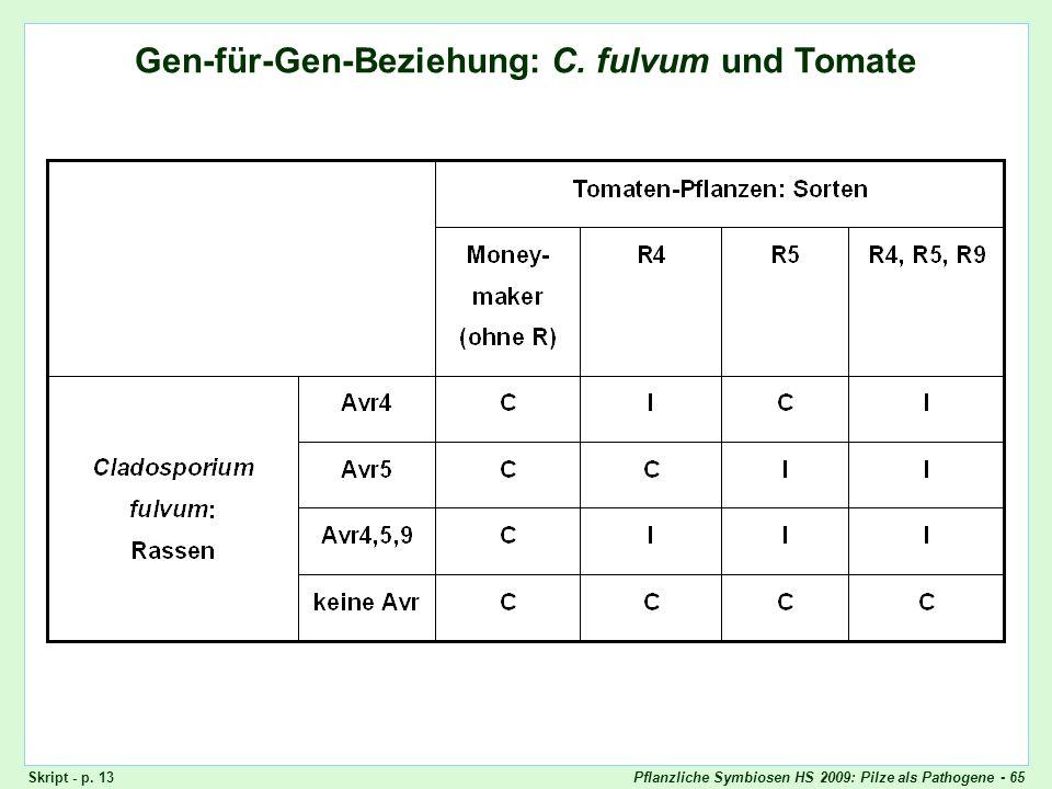Gen-für-Gen-Beziehung: Cladosporium fulvum und Tomaten