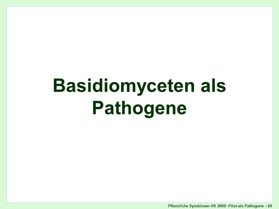 Basidiomyceten als Pathogene