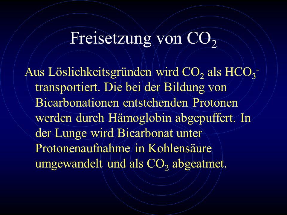 Freisetzung von CO2