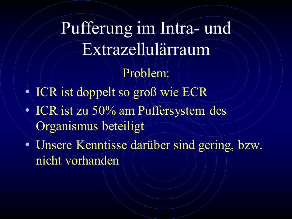 Pufferung im Intra- und Extrazellulärraum