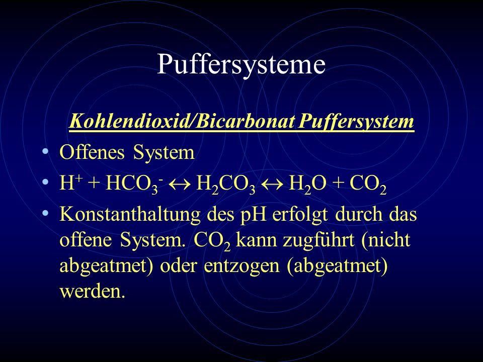 Kohlendioxid/Bicarbonat Puffersystem