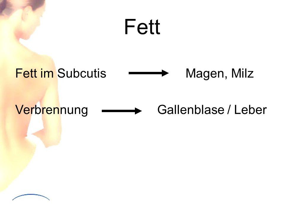 Fett Fett im Subcutis Magen, Milz Verbrennung Gallenblase / Leber