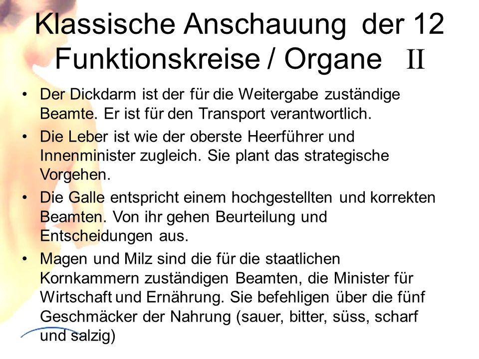 Klassische Anschauung der 12 Funktionskreise / Organe II