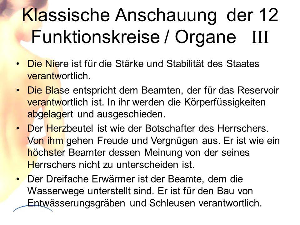 Klassische Anschauung der 12 Funktionskreise / Organe III