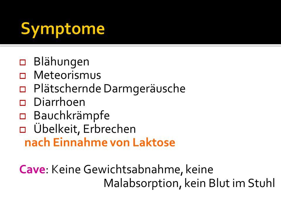 Symptome Blähungen Meteorismus Plätschernde Darmgeräusche Diarrhoen
