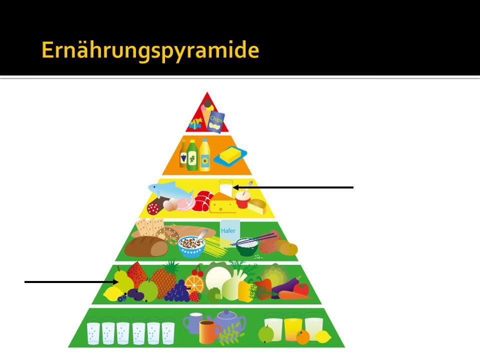 Ernährungspyramide 5