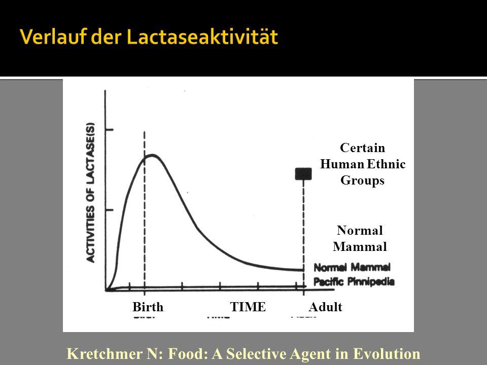 Verlauf der Lactaseaktivität