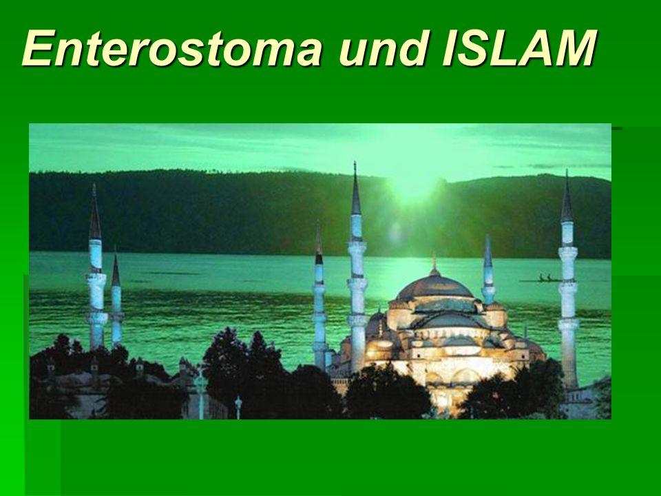 Enterostoma und ISLAM