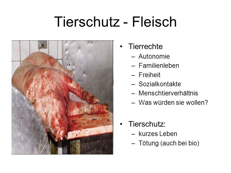 Tierschutz - Fleisch Tierrechte Tierschutz: Autonomie Familienleben