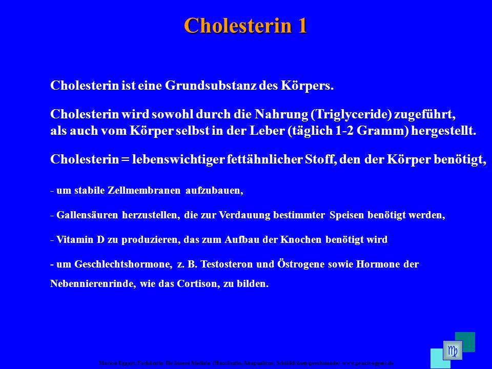 Cholesterin 1 Cholesterin ist eine Grundsubstanz des Körpers.