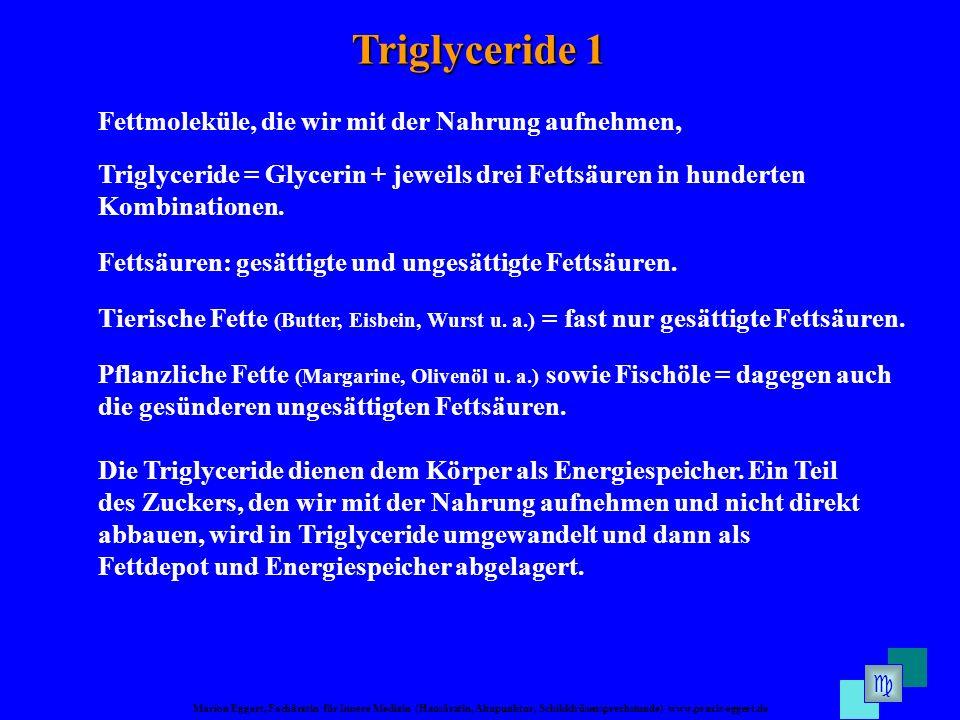 Triglyceride 1 Fettmoleküle, die wir mit der Nahrung aufnehmen,