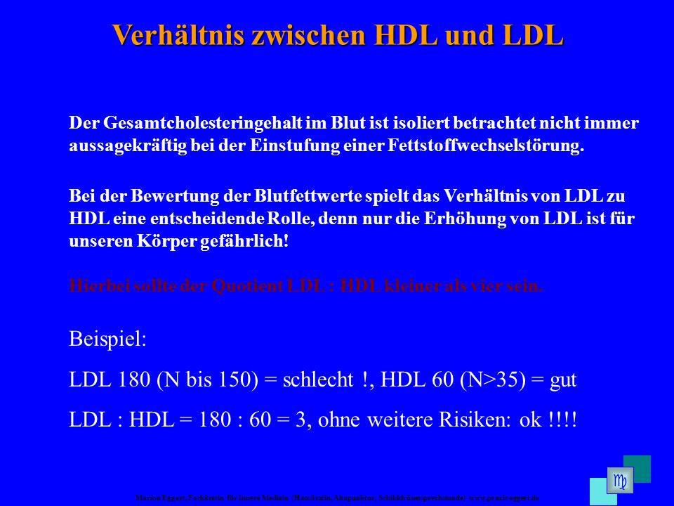 Verhältnis zwischen HDL und LDL
