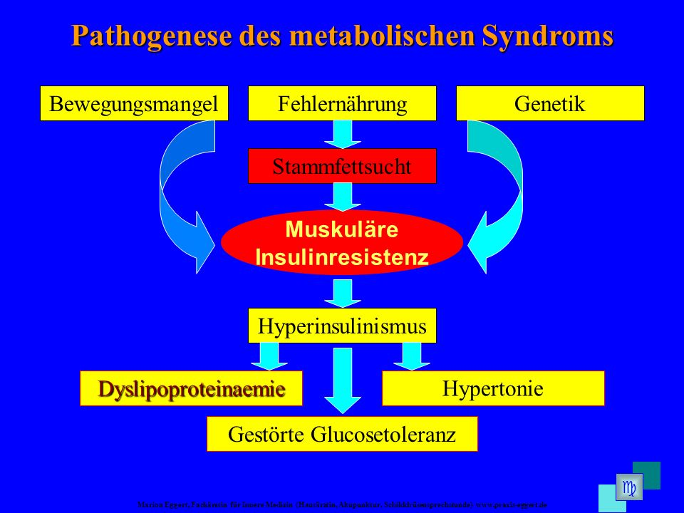Pathogenese des metabolischen Syndroms