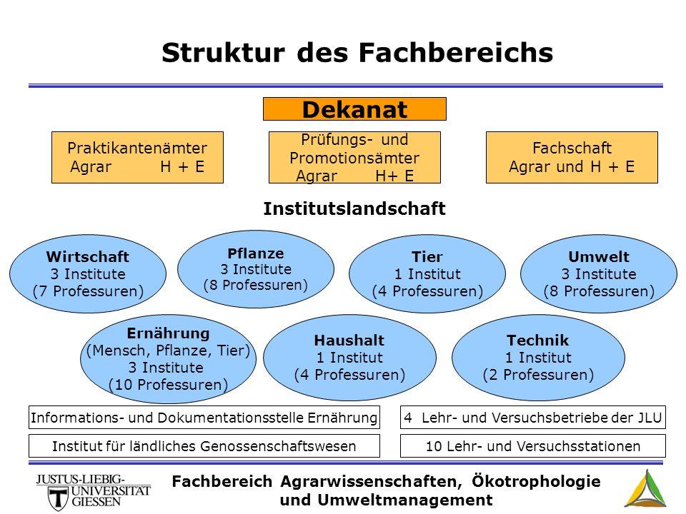 Struktur des Fachbereichs