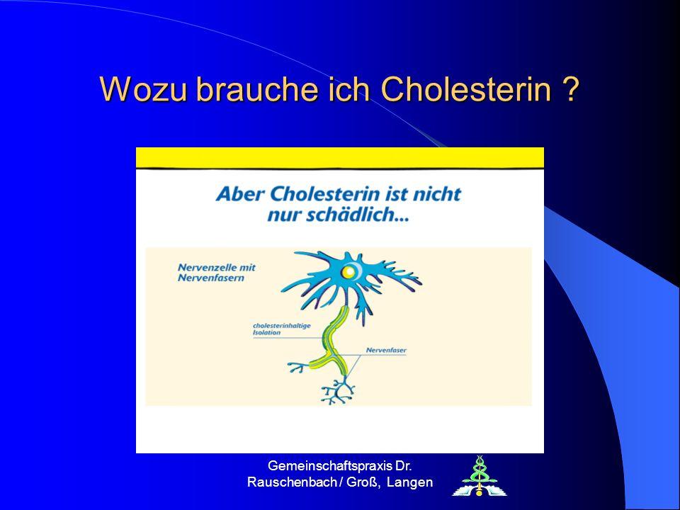 Wozu brauche ich Cholesterin