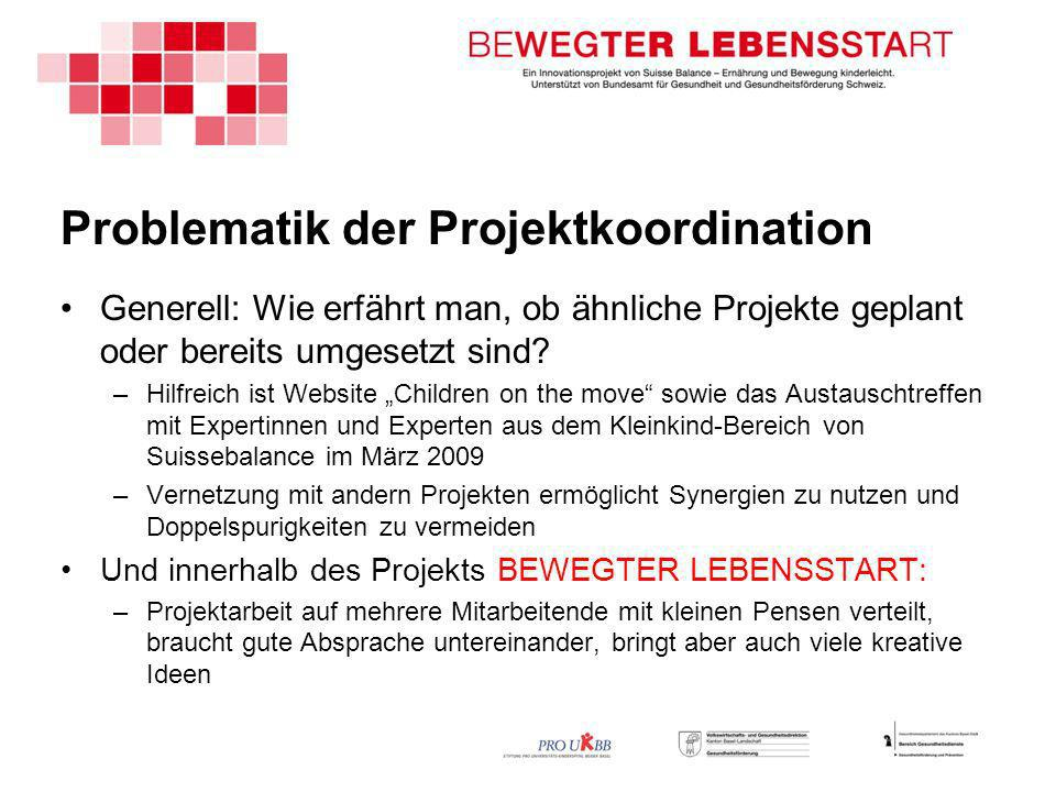 Problematik der Projektkoordination