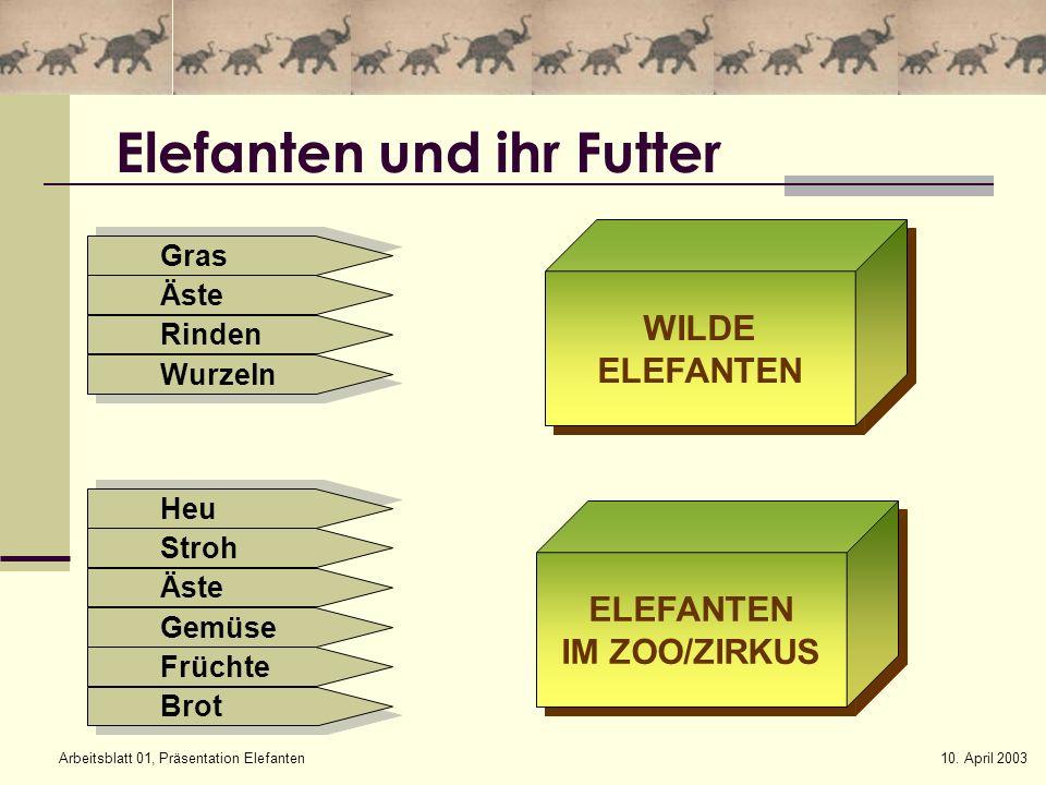 Elefanten und ihr Futter