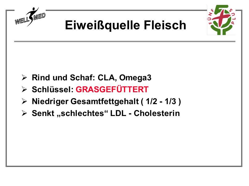 Eiweißquelle Fleisch Rind und Schaf: CLA, Omega3