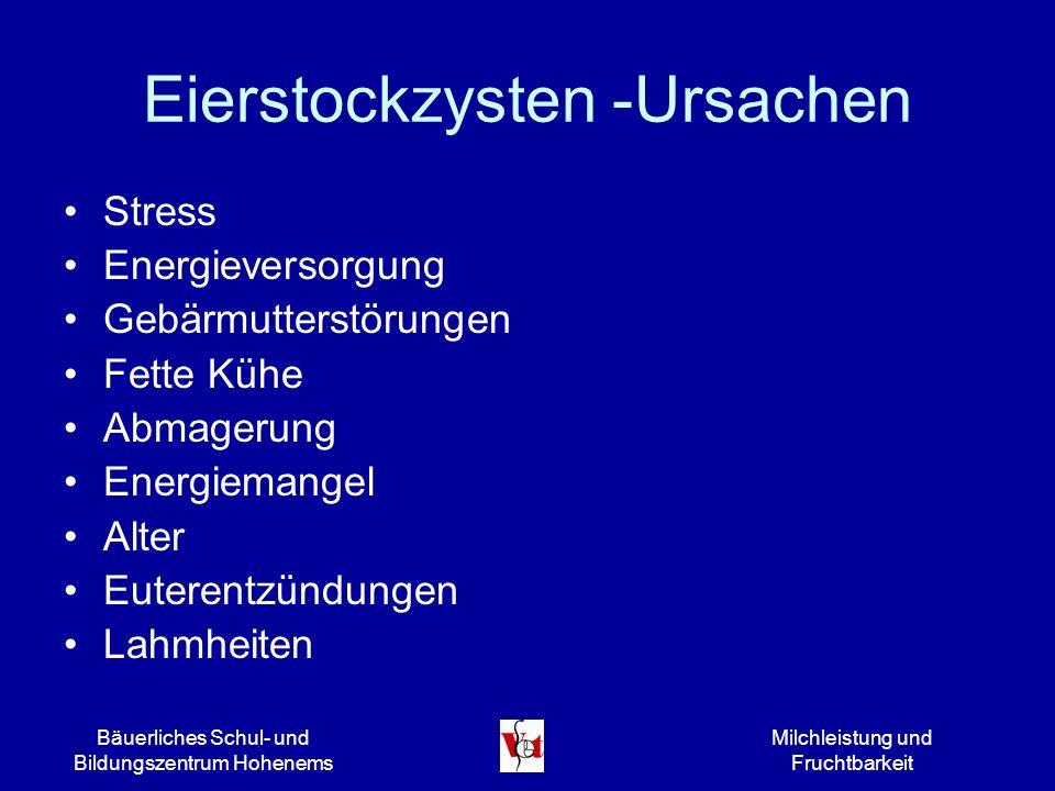 Eierstockzysten -Ursachen