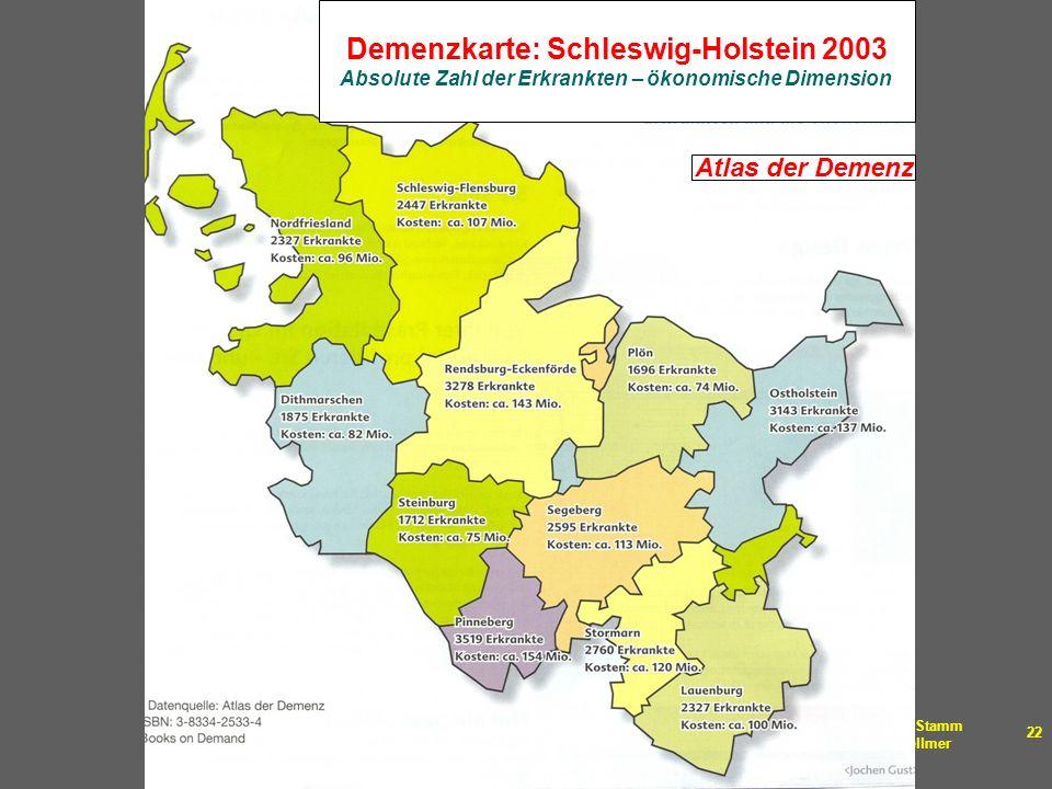Demenzkarte: Schleswig-Holstein 2003