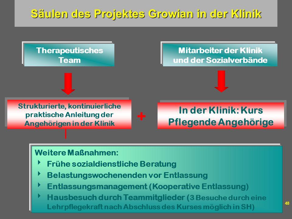 Säulen des Projektes Growian in der Klinik