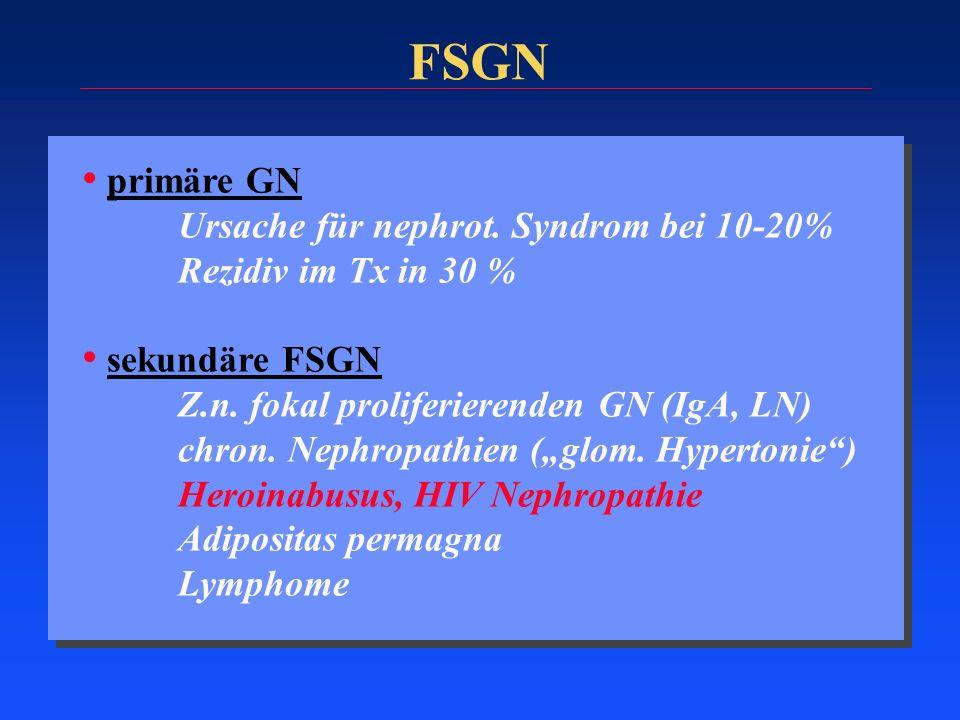 FSGN primäre GN Ursache für nephrot. Syndrom bei 10-20%