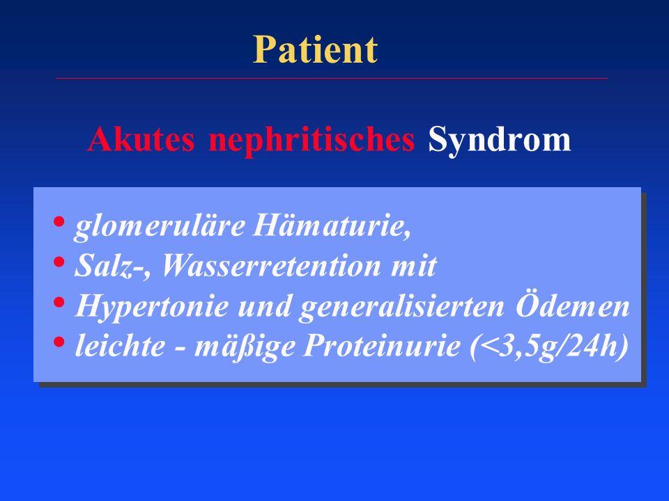 Patient Akutes nephritisches Syndrom glomeruläre Hämaturie,