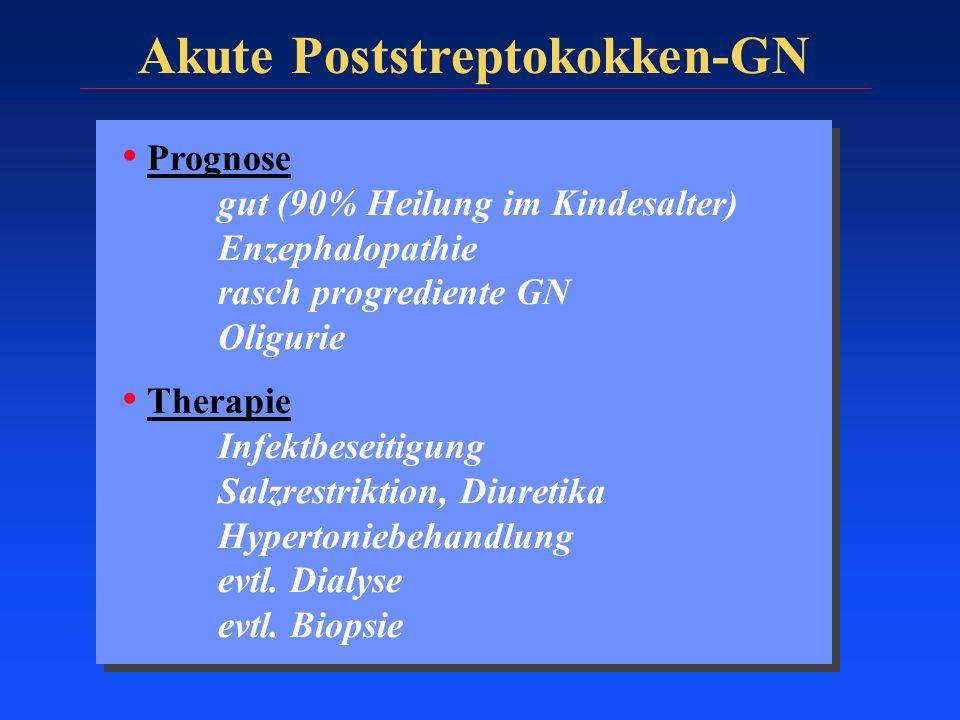 Akute Poststreptokokken-GN