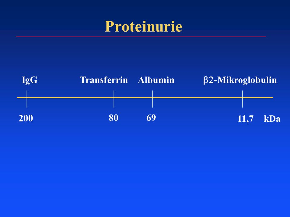 Proteinurie IgG Transferrin Albumin b2-Mikroglobulin 11,7 69 80 200