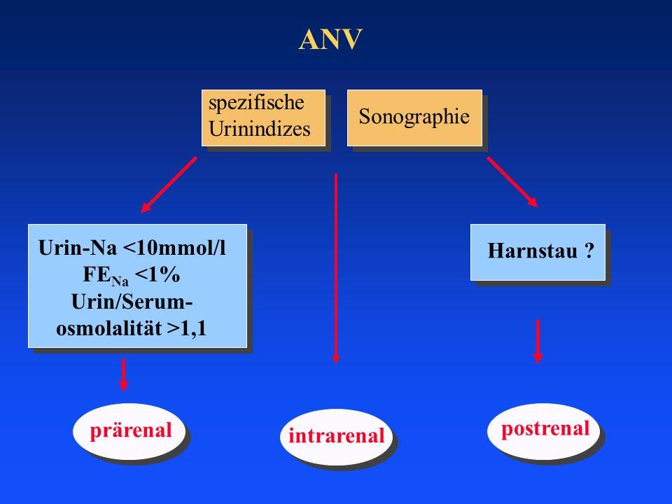ANV spezifische Urinindizes Sonographie Urin-Na <10mmol/l