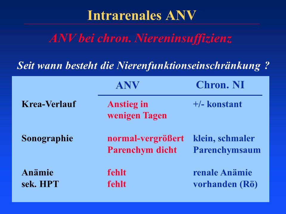Intrarenales ANV ANV bei chron. Niereninsuffizienz