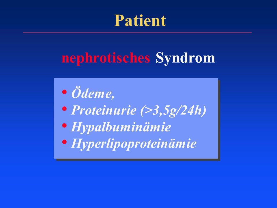Patient nephrotisches Syndrom Ödeme, Proteinurie (>3,5g/24h)