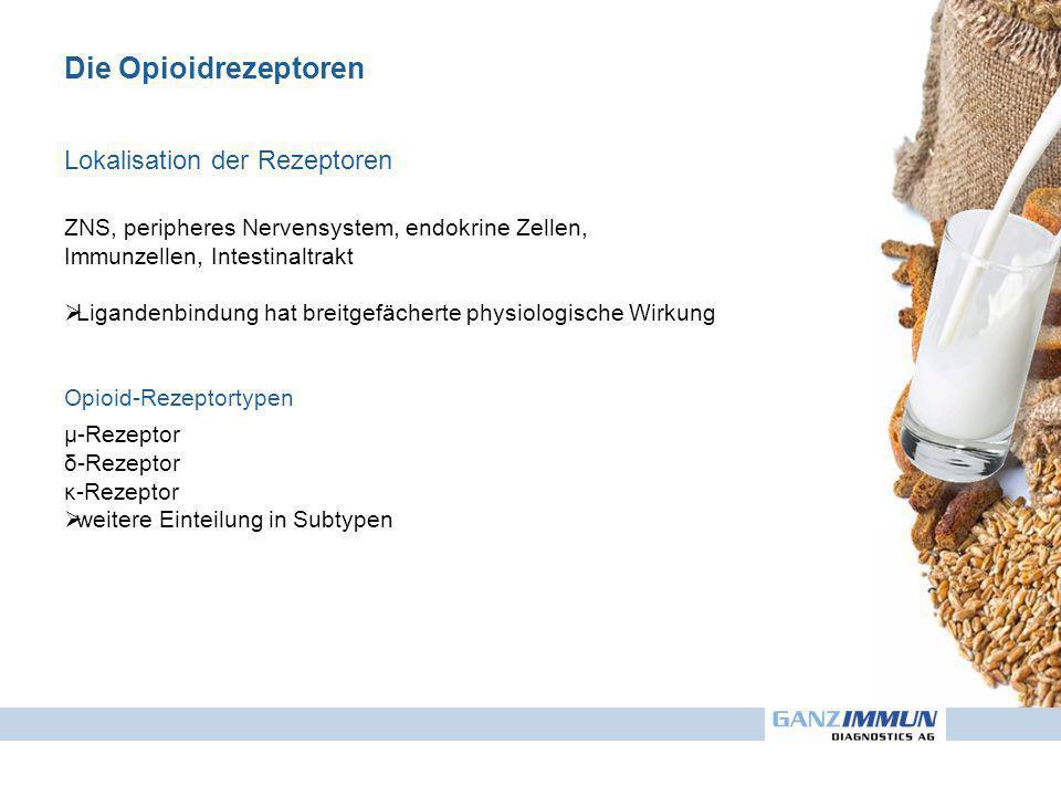 Die Opioidrezeptoren Lokalisation der Rezeptoren