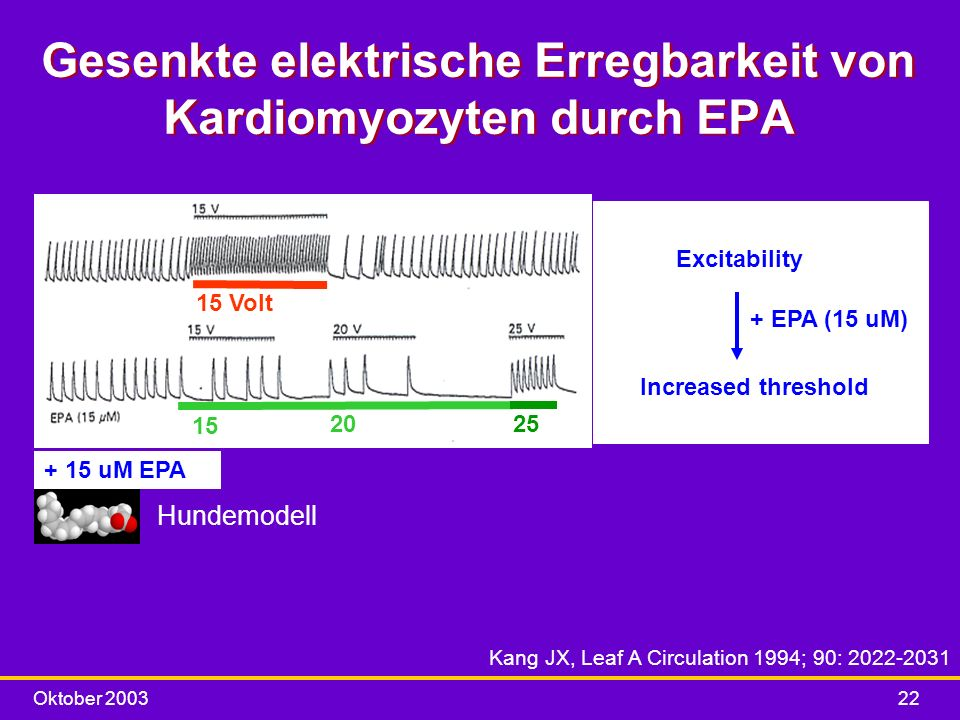 Gesenkte elektrische Erregbarkeit von Kardiomyozyten durch EPA