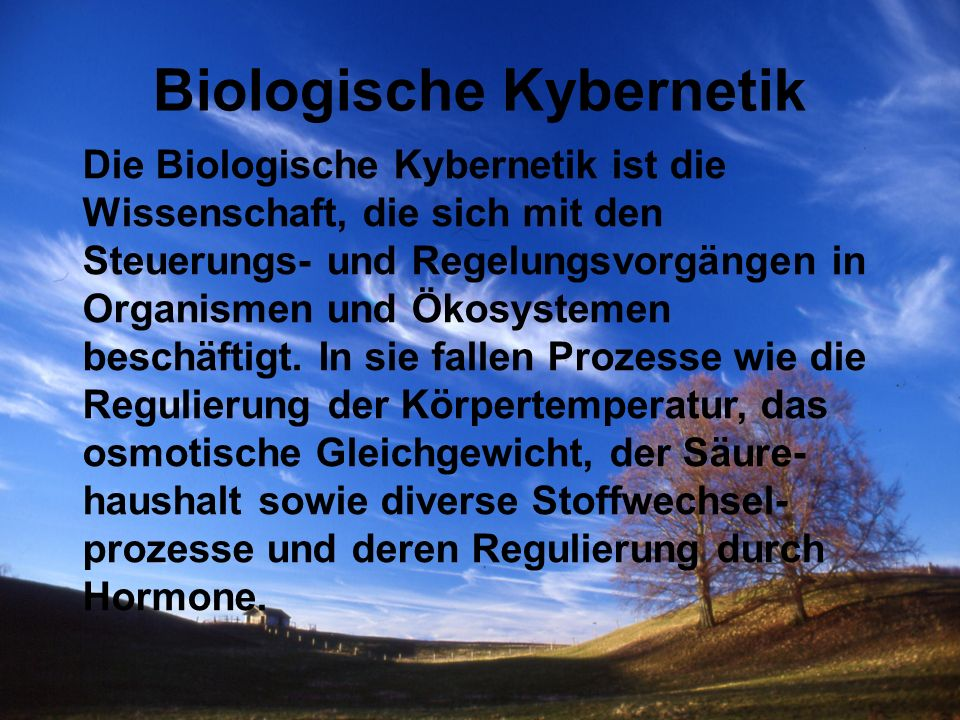 Biologische Kybernetik