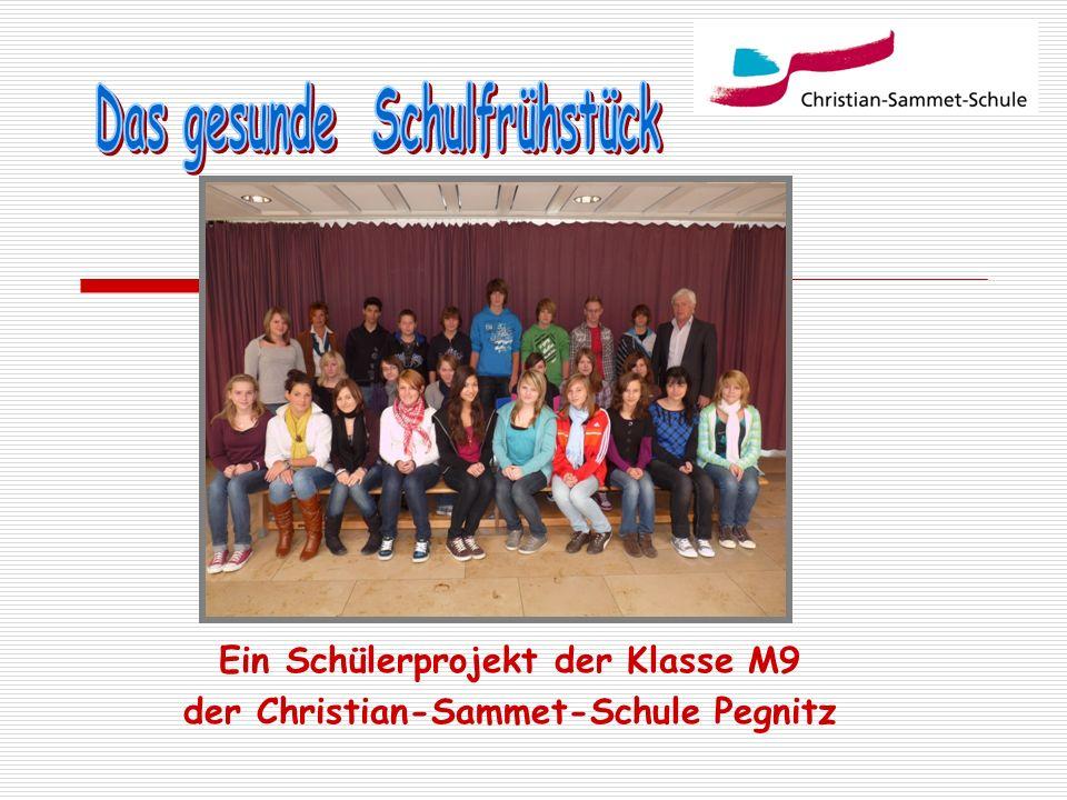 Ein Schülerprojekt der Klasse M9 der Christian-Sammet-Schule Pegnitz